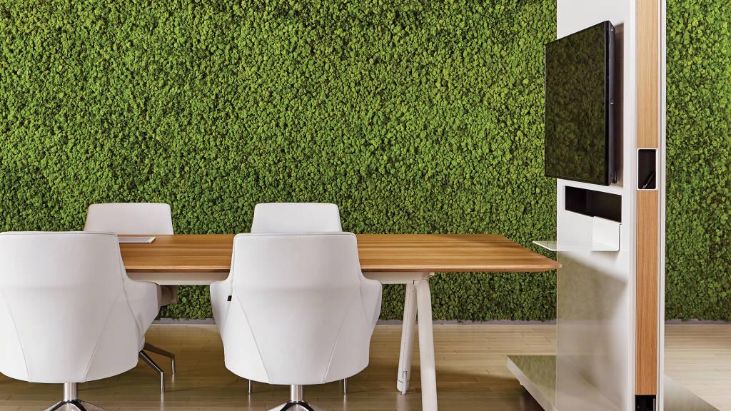 Biophilic Interior Design Concept