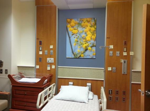Patient Treatment Room Options
